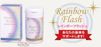 Rainbow Flash(レインボーフラッシュ)石蓮花 No.1